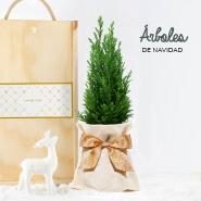 Árboles de Navidad 2019