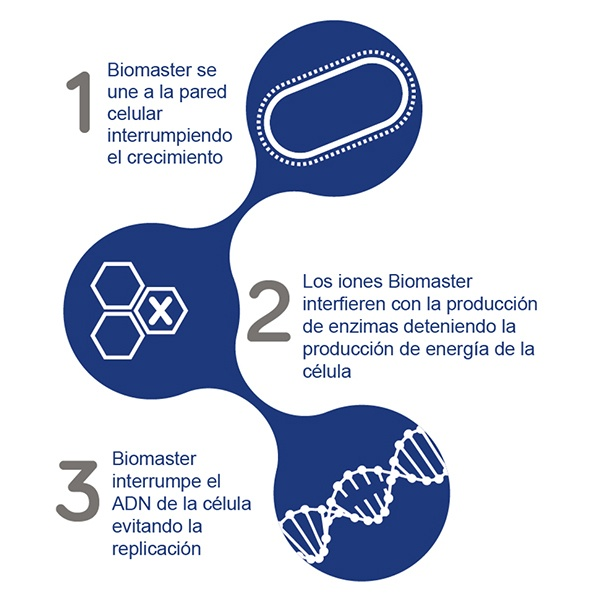 Infographic Biomaster