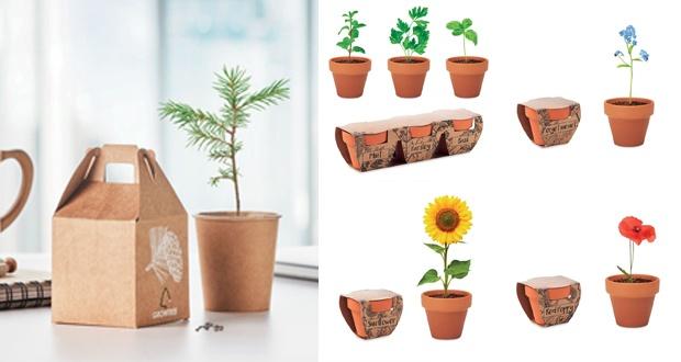 Novedades More Than Gifts 2021: jardinería